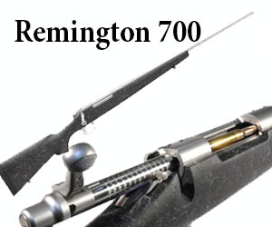 REMINGTON 700 MTN SS 308W